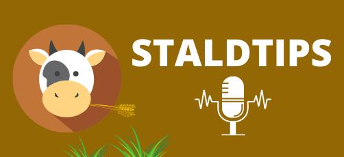 Podcast til landbrugselever: Staldtips