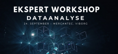 Ekspert Workshop: Dataanalyse (Viborg)