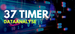 Dataanalyse – Hovedforløb Digital handel