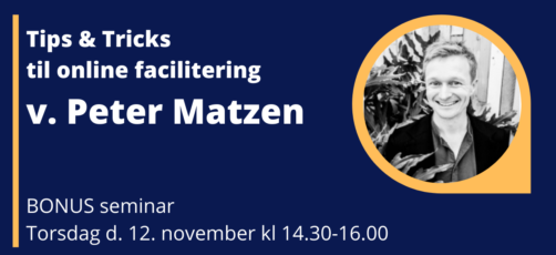AHEAD20 – Bonus-seminar, online facilitering