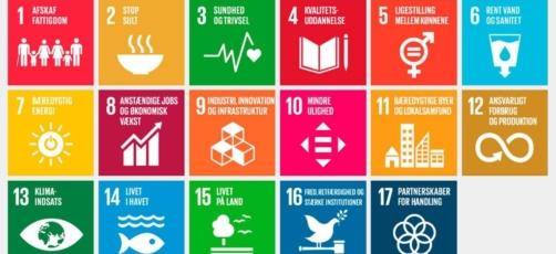Bæredygtighed og dannelse