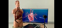 VR Share Care Hjertekredsløb