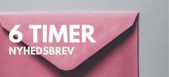 Nyhedsbrev – Dansk D (6 timer)