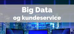 Big Data | EUD/EUX: Erhvervsinformatik C