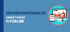 Erhvervsinformatik C/B   Samlet pakke med forløb