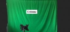 Billedanalyse med Green Screen, Dansk på C niveau
