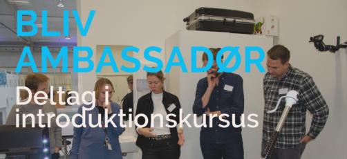 Ambassadørrollen